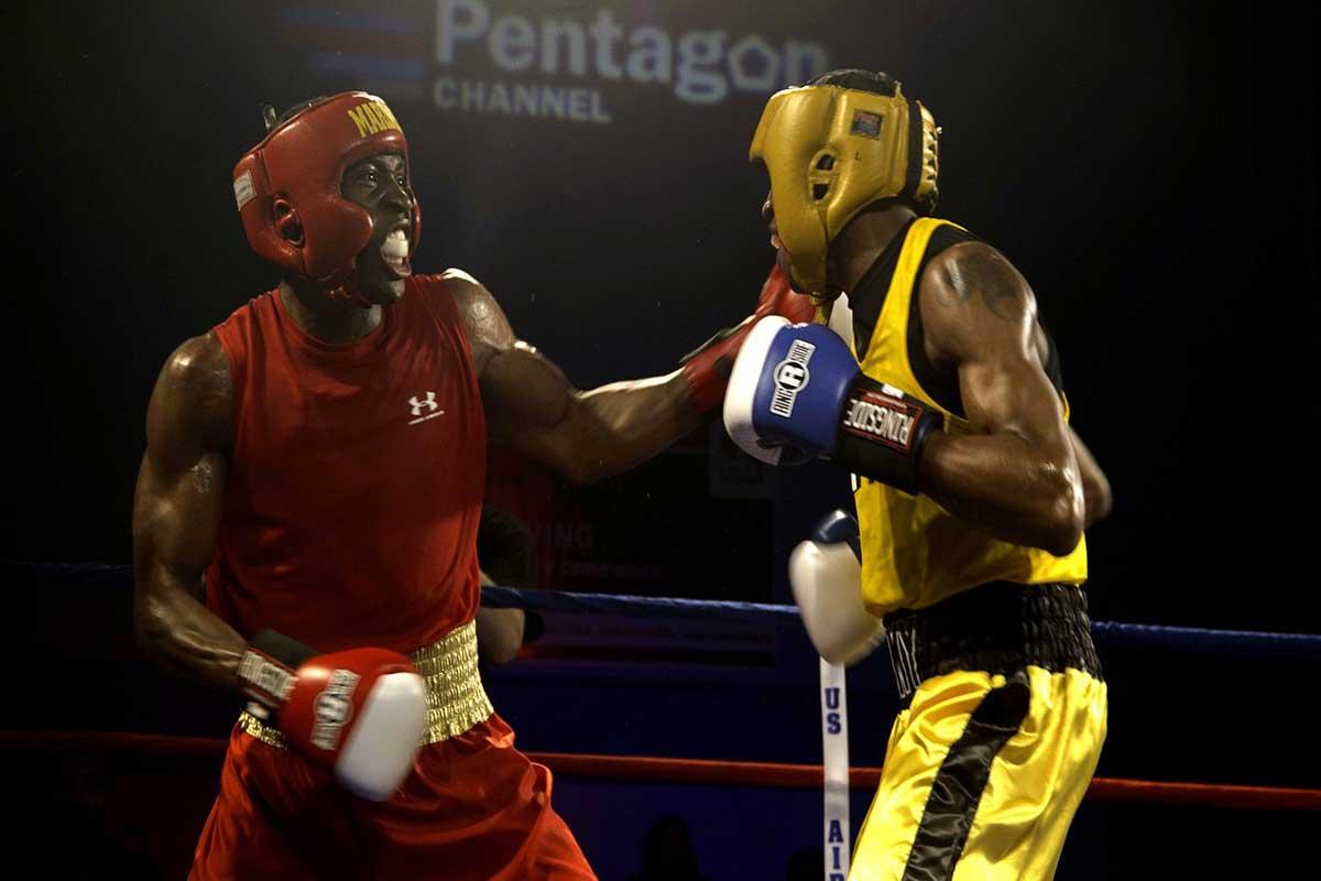 boxers-652388_1280