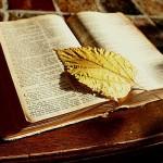 Biblia Uwodzenia w Dzień (Video)